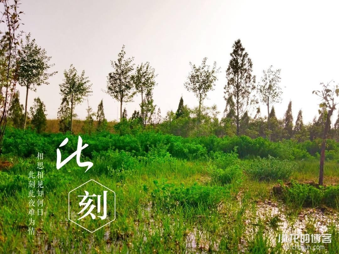 20180513人工湖
