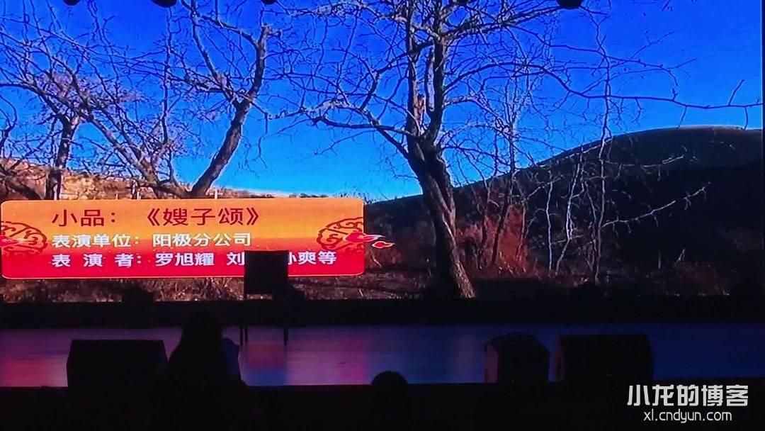 嫂子颂-公司晚会视频